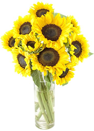KaBloom Happy Days Sunflower Bouquet: 10 Bright Yellow Sunflowers with Vase