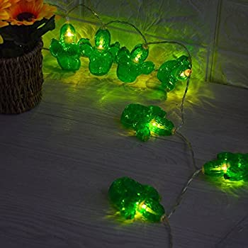 Amazoncom  Cactus String lights Battery Operated Buildin Timer