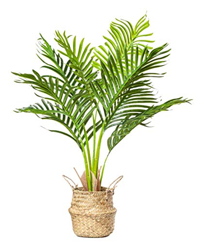 PLANTAE Mini Artificial Areca Palm Tree 30