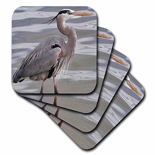 3dRose LLC cst_19132_3 Great Blue Heron Ceramic Tile Coasters, Set of 4 ()