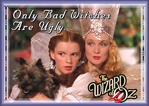 Ata-Boy Wizard of Oz Only Bad Witches are Ugly 2.5