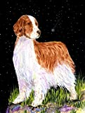 Cheap Caroline's Treasures SS8482CHF Starry Night Welsh Springer Spaniel Flag Canvas, Large, Multicolor