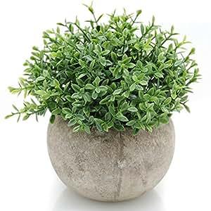 Velener Mini Plastic Artificial Plants Benn Grass in Pot for Home Decor (Green)