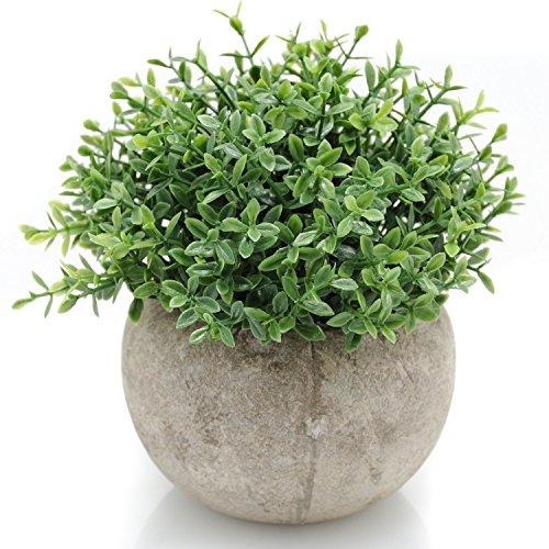 Velener Mini Plastic Artificial Plants Benn Grass in Pot for Home Decor (Small Corner Curio Cabinet)