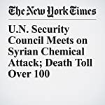 U.N. Security Council Meets on Syrian Chemical Attack; Death Toll Over 100 | Somini Sengupta,James Kanter