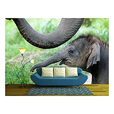 Created Just For You, Charming Technique, Baby Elephant Side by Side with Its Mother