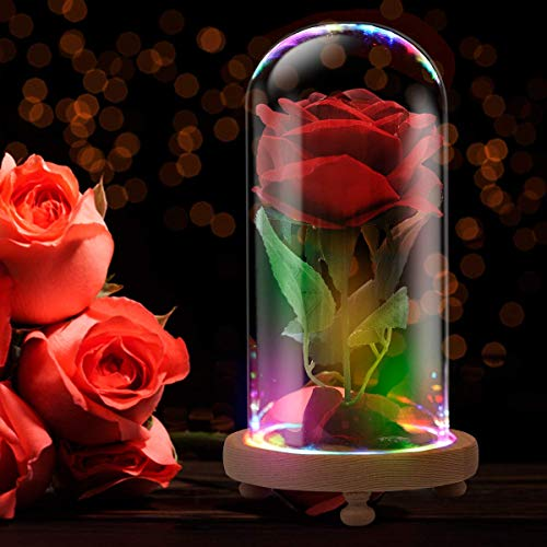 jiabang Beauty and The Beast Rose Enchanted Red Silk Rose LED Light in Glass Dome - Romantic Gift for Her | Movie Theme Party Mother's Day Valentine's Day Wedding Decoration