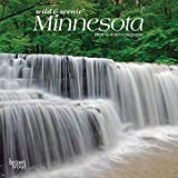 Minnesota Wild & Scenic 2020 7 x 7 Inch Monthly Mini Wall Calendar, USA United States of America Midwest State Nature