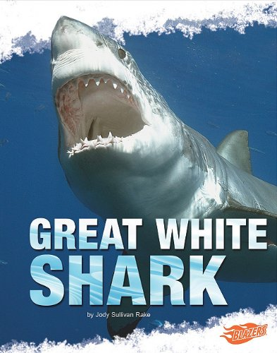 Great White Shark (Shark Zone)