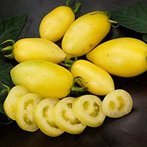 Yellow Tomato Seeds Cream Sausage Organically Grown Heirloom NON-GMO