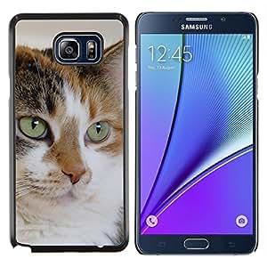 KLONGSHOP // Cubierta de piel con cierre a presión Shell trasero duro de goma Protección Caso - Mutt Mestizo Cat House Cat Técnica - Samsung Galaxy Note 5 5th N9200 //