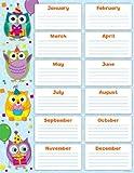 owl birthday chart for classroom - Carson Dellosa Colorful Owls Birthday Chart (114199)