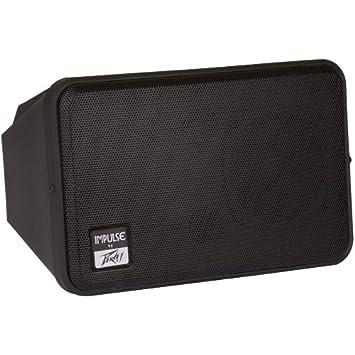 Amazon.com: Peavey IMPULSEII Unpowered Speaker Cabinet: Musical ...
