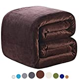 Richave Fleece Blanket Queen Size 350GSM Lightweight Throw for The Bed Extra Soft Brush Fabric Super Warm Sofa Blanket 90'' x 90''(Brown Queen)