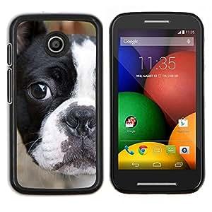 EJOOY---Cubierta de la caja de protección para la piel dura ** Motorola Moto E ** --Francés Bull Terrier Bulldog americano