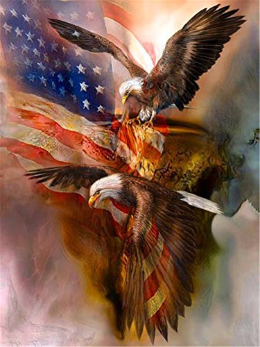 LIPHISFUN 5D Diy Diamond Painting Full Drill Square Resin Rhinestone Embroidery Unfinished Cross Stitch Home Decor Gift Eagle Flag(30x40cm) (Flag Eagle Embroidery)