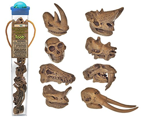 Safari Ltd Prehistoric Mammal Skulls TOOB for sale  Delivered anywhere in USA