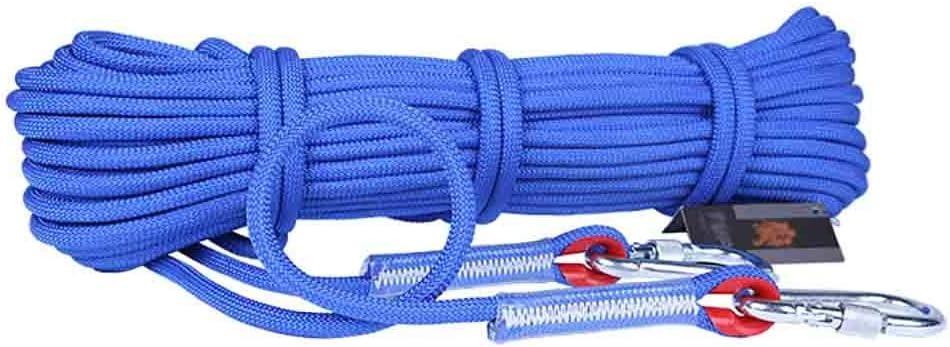 クライミングハーネス 耐摩耗性滑り止め補助ライフライン、太い12mm登山用安全補助ロープ、多色オプションの屋外用延長補助ロープ、ポリプロピレン製レスキューエスケープ補助ロープ (Color : C, Size : 30 meters)