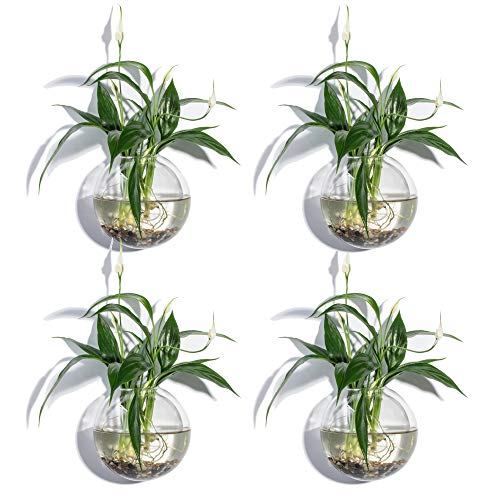 Set of 4 Wall Bubble Terrariums Glass Wall Bowl 12 cm Bubble Glass Wall Planter for Air Plants Tillandsia Holders Wall Mounted Vase Decorate Your House