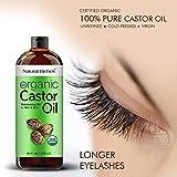 Organic Castor Oil Cold pressed USDA certified for