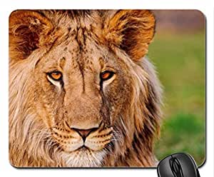 African Lion Mouse Pad, Mousepad (Cats Mouse Pad)