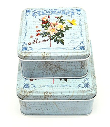 Set Of 2 Floral light blue Square Kitchen Food Storage Tin Tea Sugar Cookie Boxes MY-3459