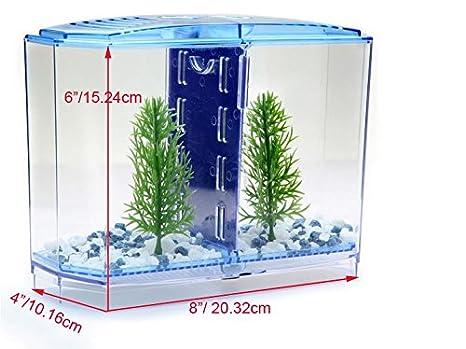 DY2DY Kit de acuario de dos filas Betta para tanque delantero: Amazon.es: Productos para mascotas