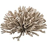 Dimond Home Briar 7 Wooden Array Sculpture in Natural