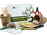 Urban Sprout Bonsai Tree Kit Grow Your Own Bonsai Trees from Seeds - Gardening Gift Set - 5 Bonzai Tree Seeds Species - Germination Starter Kit with Bonsai Tools