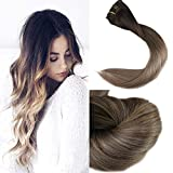 Full Shine 14 inch 10 Pcs 120g Full Head Clip Hair Extensions Human Hair Real Remy Clip in Hair Extensions Balayage Hair Color #2 Fading to Color #6#18 Ash Blonde Ombre Clip in Hair Extension