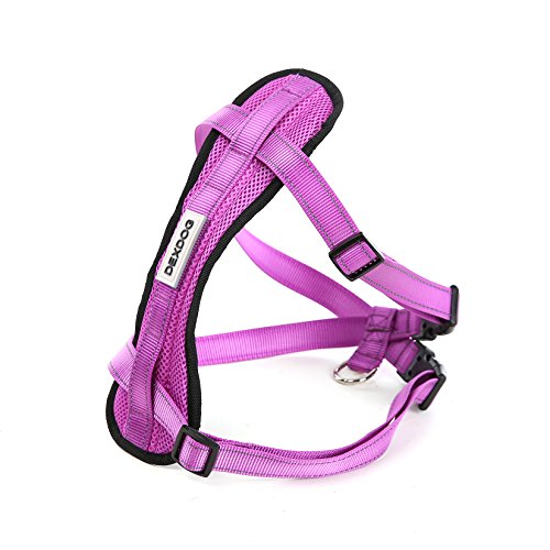 Chest Plate Harness by DEXDOG | Auto Car Safety Harness | Adjustable Straps, Reflective, Padded for Comfort | Best Dog Harness Small Large Dogs (Large, Purple)