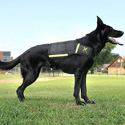 Xdog Weight & Fitness Vest for Dogs - A Weighted Dog Vest Used to Build Muscle, Improve Performance, Combat Obesity & Anxiety - Improve Your Dog's Overall Health & Exercise. (Small, Black) (Best Weighted Vest Exercises)
