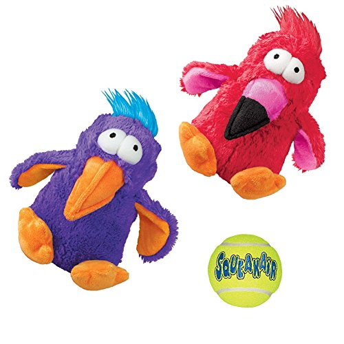 Kong Squeak Toys Variety Pack