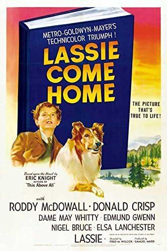 Amazon.com: Lassie Come Home POSTER Movie (27 x 40 Inches - 69cm x 102cm) ( 1943) (Style B): Posters & Prints