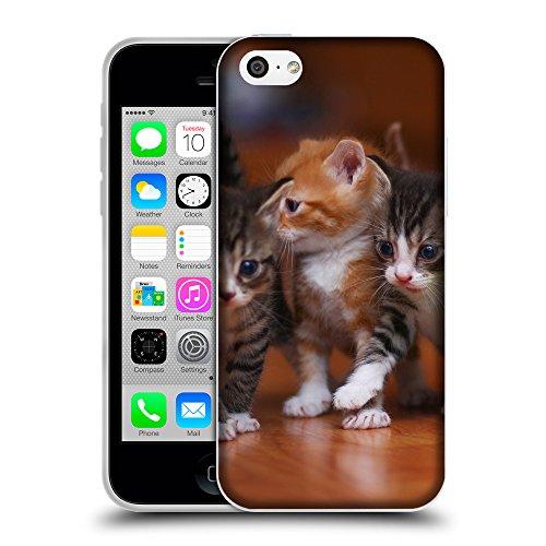 Just Phone Cases Coque de Protection TPU Silicone Case pour // V00004235 Adorable chatons nouveau-nés // Apple iPhone 5C