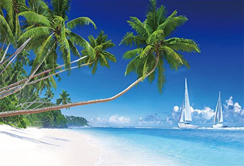 LFEEY 10x8ft Summer Beach Cruise Ship Backdrop Blue Sky Tropical Palm Tree Sailing White Sailboat Photography Background Video Drapes Business Birthday Party Wedding Decoration Photo Booth Props