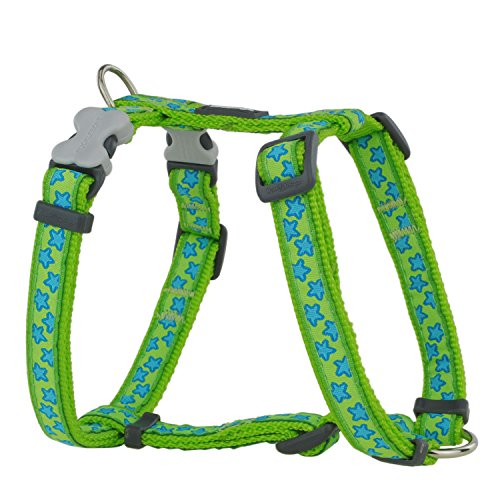 Red Dingo Stars Turquoise on Lime Green Large Dog Harness