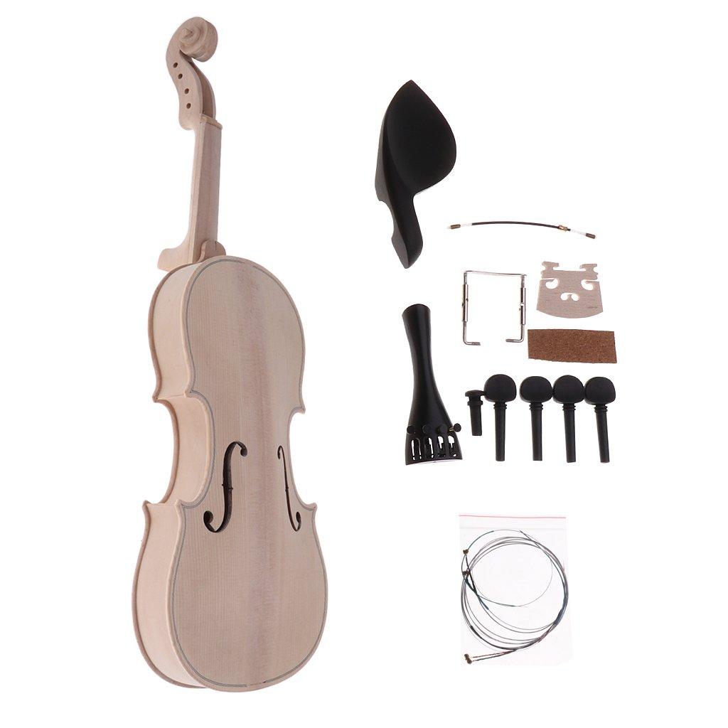 IPOTCH 1 Set Kit de Violín 4/4 para Novatos Diapasón, Cuerdas, Puente, Montonera Tornilllos Cninrest: Amazon.es: Instrumentos musicales