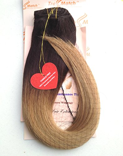 Tressmatch 20''-22'' Remy (Remi) Human Hair Clip in Extensions Ombre/dip Dye Brunette/Dark Brown/Blonde Full Head Set 10 Pieces(pcs) [Set Weight:5.3oz/152grams] (20''-22'' 152g, Brunette to Bleach Blonde) by TressMatch