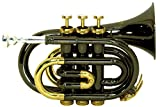 Roy Benson RBPT101K Bb Pocket Trumpet, Black Lacquered