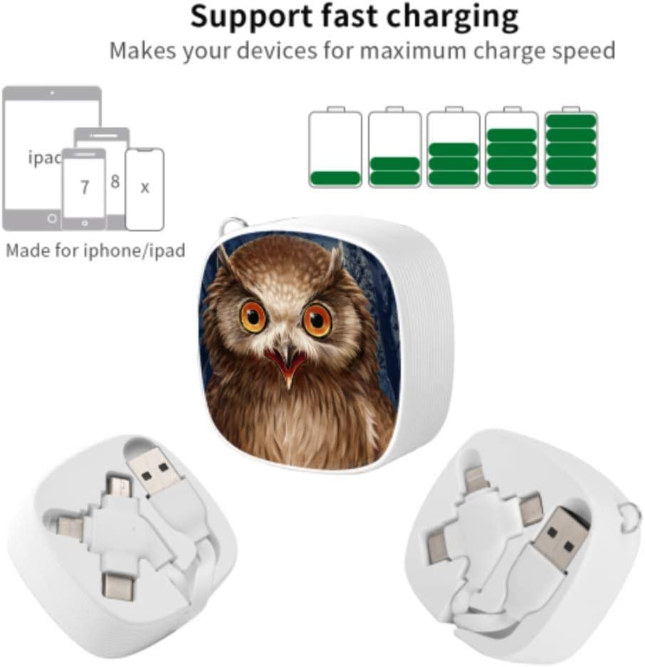 Micro USB Phone Charger Cable Art Gray Natural Bird Owl Oil Painting Multi 3 in 1 Retractable Multi Charging Cable with Micro USB//Type C Compatible with Cell Phones Tablets and More