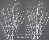 GreenFloralCrafts Birch Branches (Pack of 12 Stems), 3-4', Snowy White