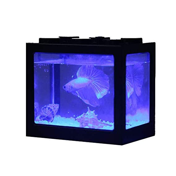 Ecological Aquarium Box Acuario De Sobremesa Mini Pequeño Betta Escritorio De Oficina con Luz LED Farming Ornamental Tank: Amazon.es: Hogar