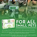 """Small Pet Select 2nd Cutting """"Perfect Blend"""" Timothy Hay Pet Food 24"""