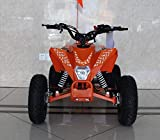 HML MOTO Youth Assembled ATV EGL Mini MADIX-HD 110cc Air Cooled Single Cylinder 4 Stroke ATV Quad Fully-Automatic (Orange)