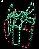 LED Gift Box 3-D Holiday Frame Lighting