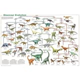(24x36) Laminated Dinosaur Evolution Educational Science Chart Poster by Poster Revolution
