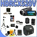 Sony HDR-CX520V 64GB Flash High Definition Camcorder (Black) BigVALUEInc Accessory Saver FH100 Replacement Battery/Rapid External Charger Bundle by Sony