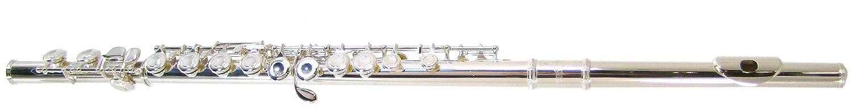 BR FL229 Closed Hole Flute クローズドホール フルート Barrington社 silver【並行輸入】 B0002KX0FA