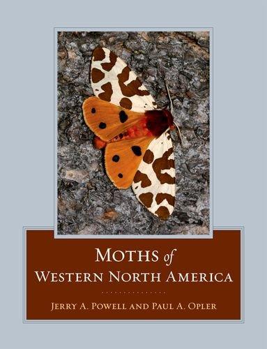 moths-of-western-north-america